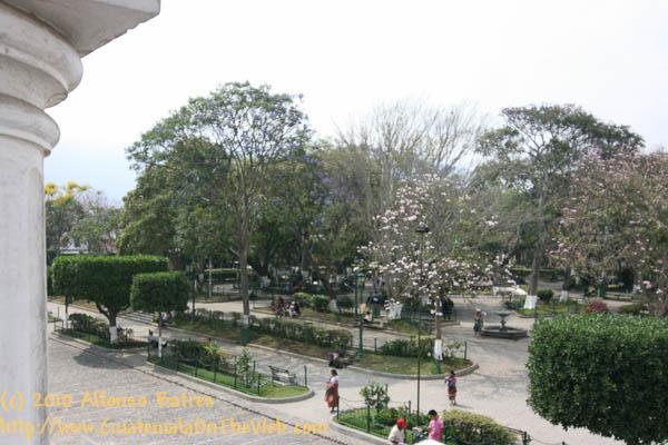 centralpark-9