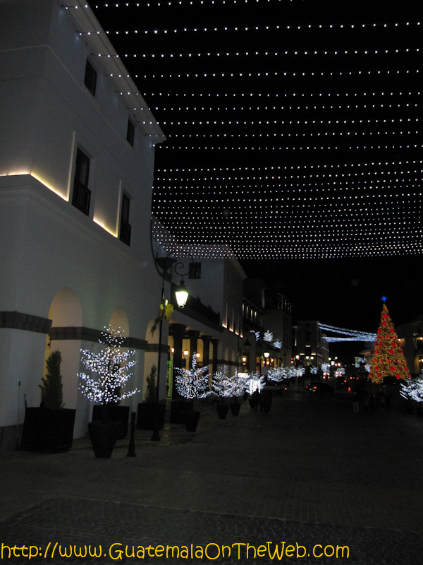 paseocayala-9